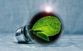 illustration idées eco energie