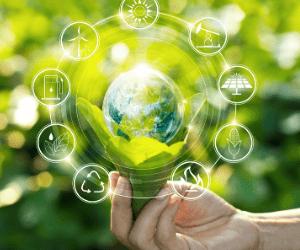 Énergie renouvelable : laquelle choisir ?